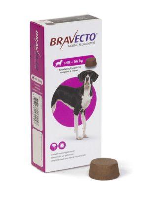 Bravecto >40 a 60 Kg